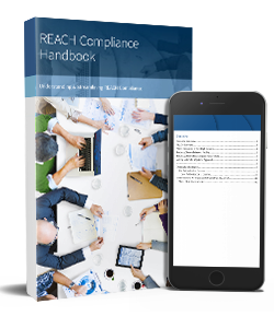 REACH_Compliance-Ebook